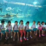RiverSafari_ChildFirst@Mountbatten_Cover