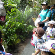zoo-childfirst-king-albert-park-featured