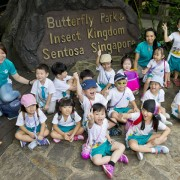ButterflyPark_N_InsectKingdom_CF@Mountbatten_Cover