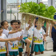 kokfah-technology-farm-childfirst-tampines-cover
